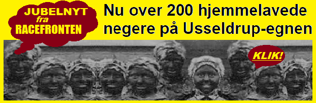 Henv200negere