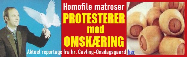HenvCavlMATROSER