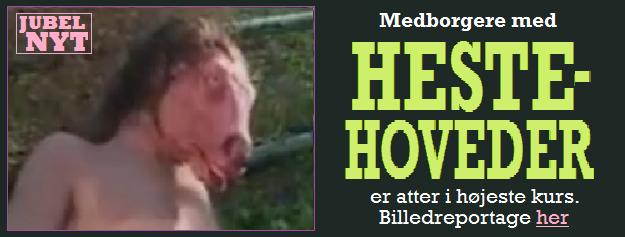HenvHESTEHOVEDER