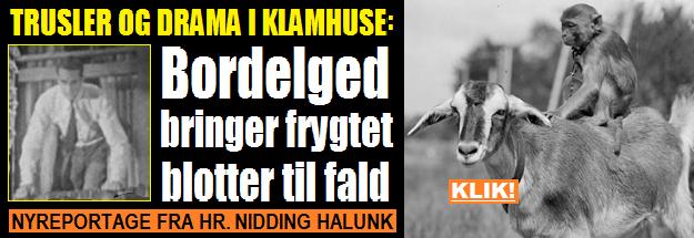 HenvHalunkBORDELGED