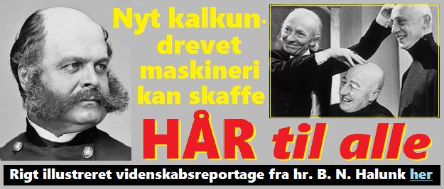HenvHalunkHÅRTILALLE