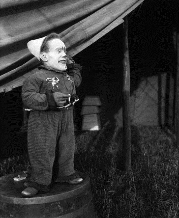 Circus Dwarf