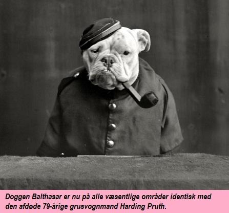 hund03