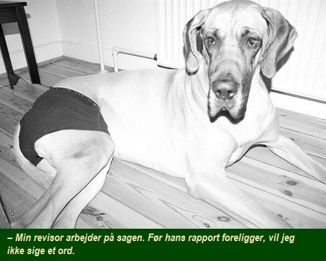 Ældrelandhund