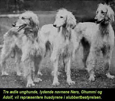 Slubberthunde