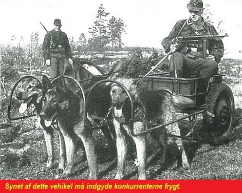 Hundekærre