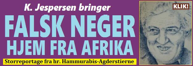 HenvFALSKNEGER