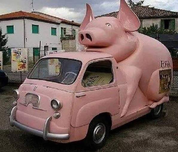 Piggomobil03